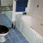 Bathroom Flooring Ideas 2013 006