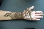 Indian Mehndi Designs 2013 0015