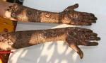 Indian Mehndi Designs 2013 0018