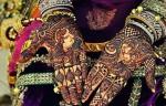 Indian Mehndi Designs 2013  005