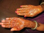 Indian Mehndi Designs 2013 009