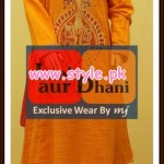 Laal Aur Dhani Winter 2012 Collection For Women 008