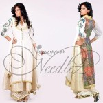 Needlez by Shalimar Winter Collection 2012-13 for Women 003