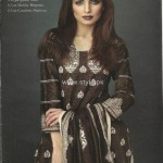 Orient Textiles Jacquard Collection 2012-13 for Winter 001