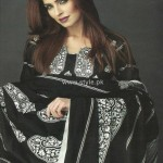 Orient Textiles Jacquard Collection 2012-13 for Winter 007