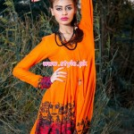 Annus Abrar Formal Wear Collection 2013 For Winter 002