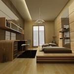 Home Interior Decoration Ideas 2013 006