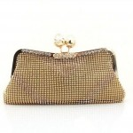 Latest Clutch Designs 2013 For Women 0013