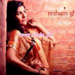 Resham Ghar Kurti Collection 2013 For Winter 010