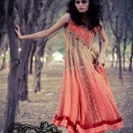 Teena by Hina Butt Winter Formals 2013 for Ladies 013