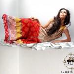 Ambreen Azhar Party Wear Dresses 2013 for Girls 014