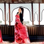 Arfa's Formal Wear Collection 2013 for Women 007