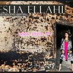 Ayesha Ellahi Latest Summer Collection 2013 002
