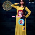 Dicha Clothing Latest Casual Wear kurti For Women 2013 004