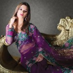 Nakshatra Designerwear Sarees Collection 2013 For Women  0015