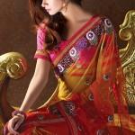 Nakshatra Designerwear Sarees Collection 2013 For Women  003
