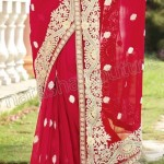 Natasha Couture Majesty Sarees Collection 2013 for Ladies 003