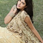 Natasha Couture Majesty Sarees Collection 2013 for Ladies 0031