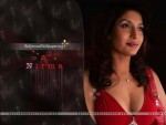 Pakistani Actress Nirma Pictures and Profile (10)