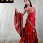 RK Munir Party Wear Collection 2013 For Women 001