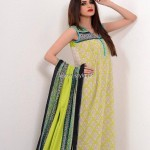 Charizma Spring Summer Collection 2013 for Women 006