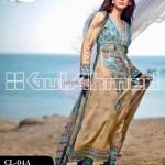 Gul Ahmed Printed Lawn Range 2013 for Women 004