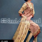 Gul Ahmed Printed Lawn Range 2013 for Women 014