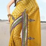 Natasha Couture Spring Saree Collection 2013 For Women 0025