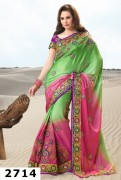 Natasha Couture Spring Saree Collection 2013 For Women 0027
