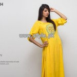 Pinkstich Basant Collection 2013 For Women 004