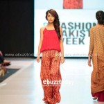 Ayesha Hasan Collection 20132 at FPW 5 0011