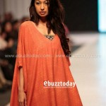 Ayesha Hasan Collection 20132 at FPW 5 0014