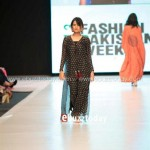 Ayesha Hasan Collection 20132 at FPW 5 0015