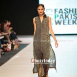 Ayesha Hasan Collection 20132 at FPW 5 0017