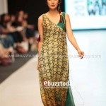 Ayesha Hasan Collection 20132 at FPW 5 0018