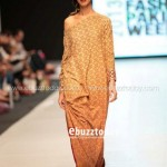 Ayesha Hasan Collection 20132 at FPW 5 0019