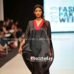 Ayesha Hasan Collection 20132 at FPW 5 002