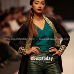 Ayesha Hasan Collection 20132 at FPW 5 0020