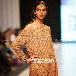 Ayesha Hasan Collection 20132 at FPW 5 0023