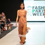 Ayesha Hasan Collection 20132 at FPW 5 0024