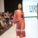 Ayesha Hasan Collection 20132 at FPW 5 0025