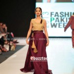 Ayesha Hasan Collection 20132 at FPW 5 0026
