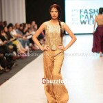 Ayesha Hasan Collection 20132 at FPW 5 0027