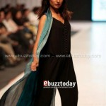 Ayesha Hasan Collection 20132 at FPW 5 007