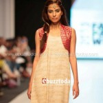 Ayesha Hasan Collection 20132 at FPW 5 008