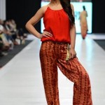 Ayesha Hasan Collection 20132 at FPW 5 009