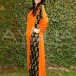 Aysha Anees Spring Summer Collection 2013 006