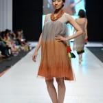 Baani D Collection 2013 At Fashion Pakistan Week 5 0012