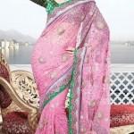 Kritikaa's Summer Saree Collection 2013 For Women 0010