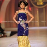 Nadya Mistry Collection At Pantene Bridal Couture Week 2013  001